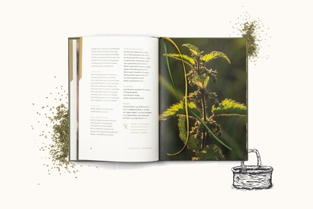 »Wildes Fast Food · E-Book« Essbare Wildpflanzen bestimmen